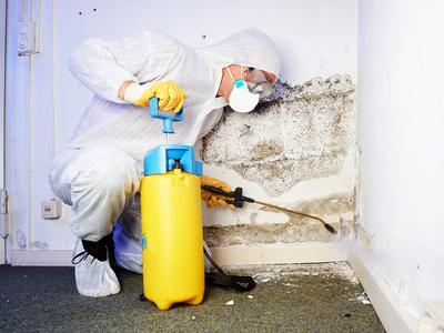 Mann in weißem Schutzanzug besprüht eine Wand mit Schimmelbefall